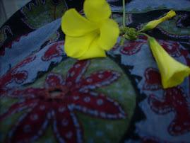fiorellini in gita al mare