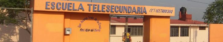 "Telesecundaria ""Sor Juana Inés de la Cruz"""