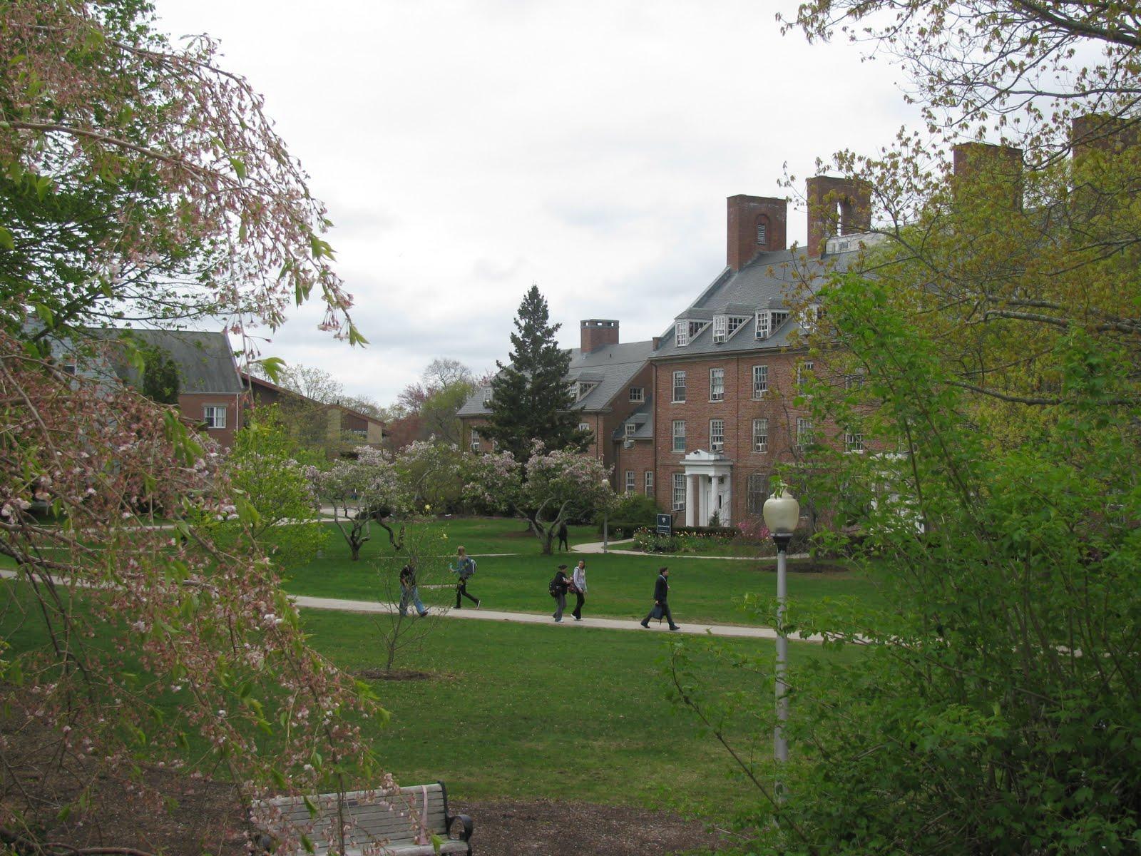 Rhode Island College Nursing Ranking
