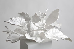 Carla Mattii | artist