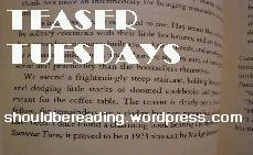[teaser+tuesday.bmp]