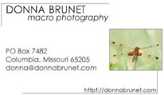 Click my business card to find the Donna Brunet Macro Photography page on Facebook