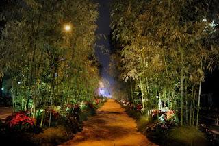 Hanoi flower festival conner  in New year