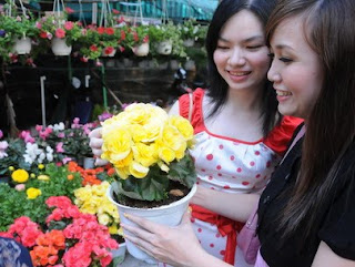 Woman choice best beautiful flower  for her family