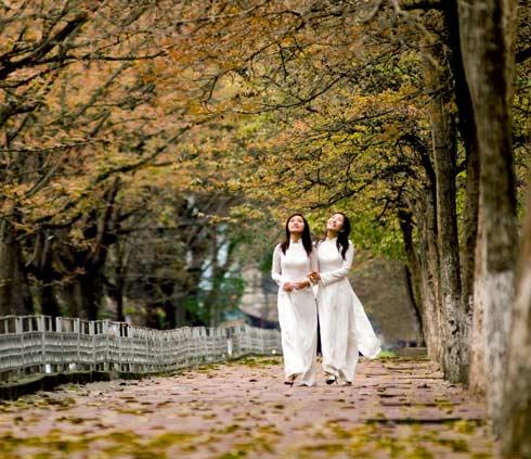 Hanoi-autumn11_photo.jpg