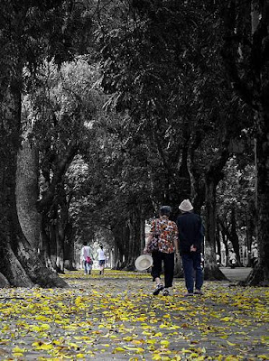 The famous Hanoi autumn melody - part 2