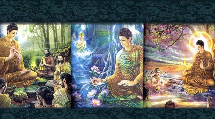 Understanding Dhamma