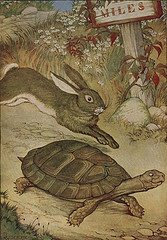 The Tortoise & The Hare, by Milo Winter
