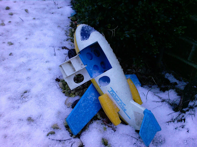 CRASHED PLANE IN SNOW
