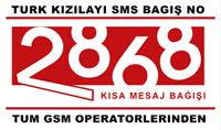 Kızılay 2868