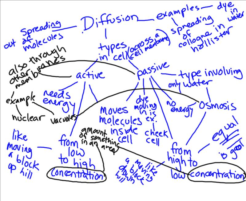 Finley Period 8: Period 8- Concept Map Discussion