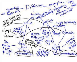Finley Period 8 Period 8 Concept Map Discussion