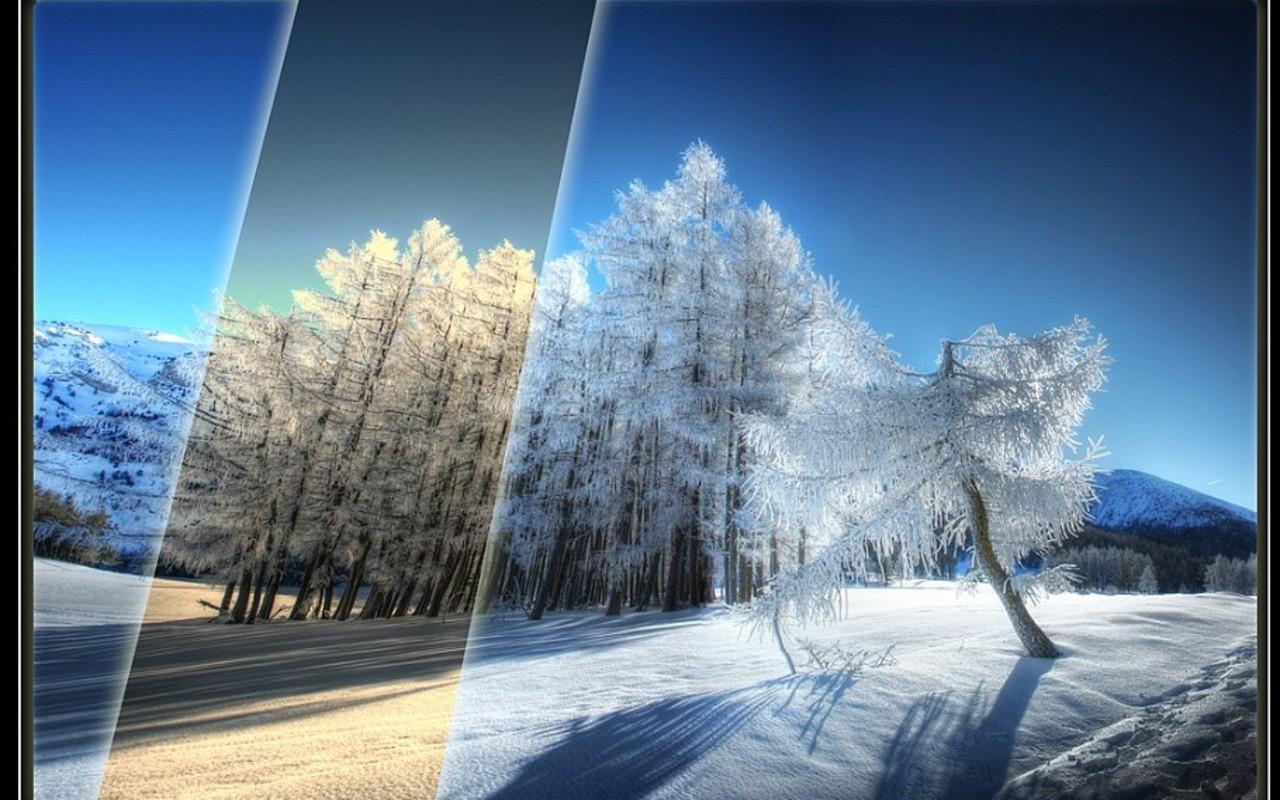 http://4.bp.blogspot.com/_Zw41kxI2akg/TPAV4F9F9dI/AAAAAAAAC0c/iU4UOUO7hBs/s1600/peisaje_de_iarna_2011_wallpaper.jpg