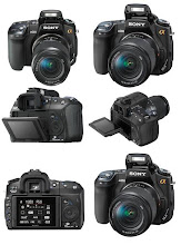 Sony Camera Alpha Series