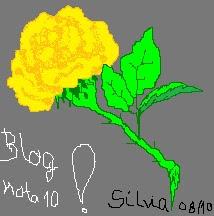 Miminho da Sílvia