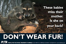Don&#39;t Wear Fur