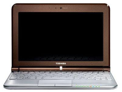 Toshiba NB305-A120