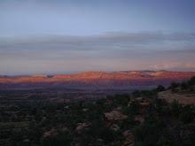 Desert Dreaming...