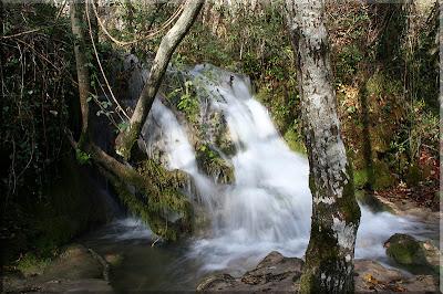 Cascadas que hechizan