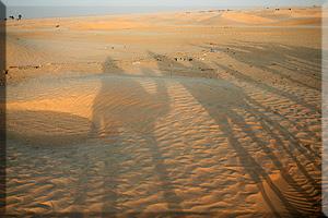 sombras en el desierto