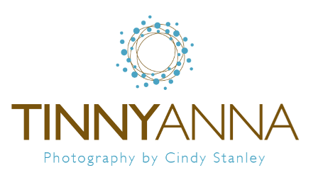 TinnyAnna Photography