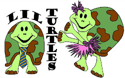 Check Out Lil Turtles