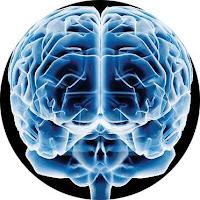 O poder do seu cérebro