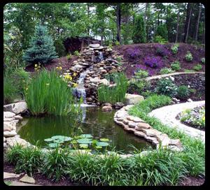 Enviflora lo que tu jard n dice de ti arquitectura del for Arquitectura de jardines