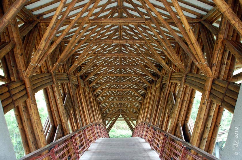 bamboo tensile structures - photo #17