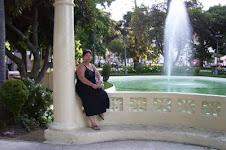 Viaje a Chile-2008 / 09