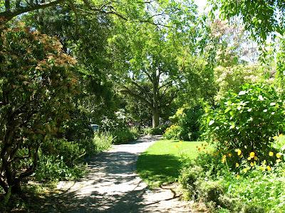 parsons gardens, west queen anne, seattle