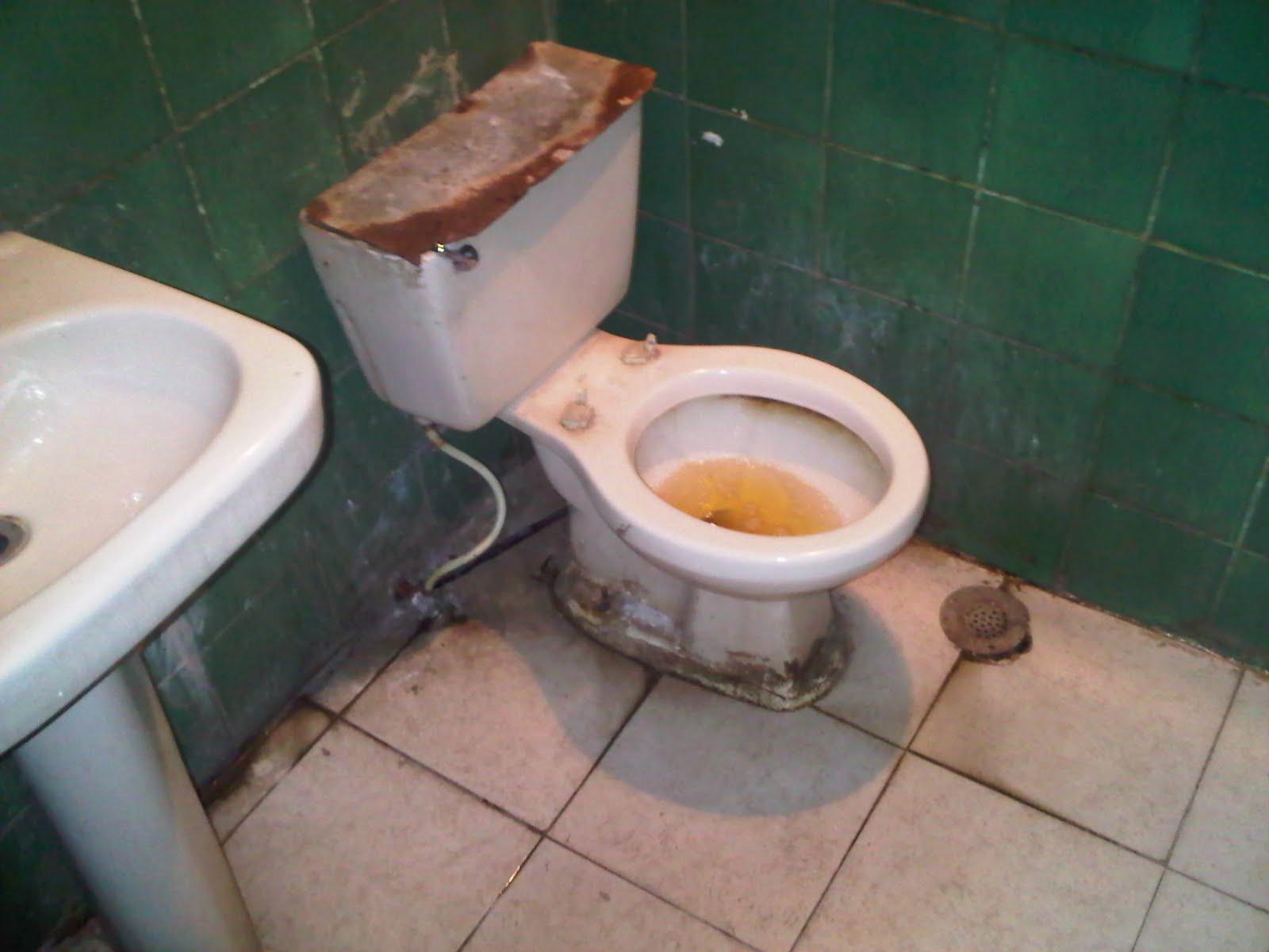 """Imagen De Baño Limpio:curiosidades y pensamientos Un blog para pensar: """"Más sucio que un"""