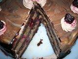 Çikolatalı ve böğürtlenli ev yapımı katkı malzemesiz pasta