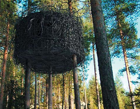 This is one of the many varieties of designer tree hotels in Sweden you can  choose to stay in when you visit. The tree house shown above is much like a  ...