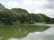 Taman Tasik Taiping