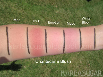 Chantecaille, blush, swatches, Wind, Thrill, Emotion, Mood, Winter Bloom