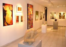 """εκθεση """"Δρωμενα τεχνης 2010"""" στο MΟΥΣΕΙΟ ΓΟΥΝΑΡΟΠΟΥΛΟΥ"""
