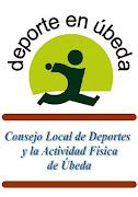 Estatutos Consejo Local de Deportes y la Actividad Física