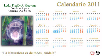 CALENDARIO 2011