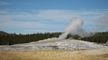 old faithful 1 year anniversary Yellowstone