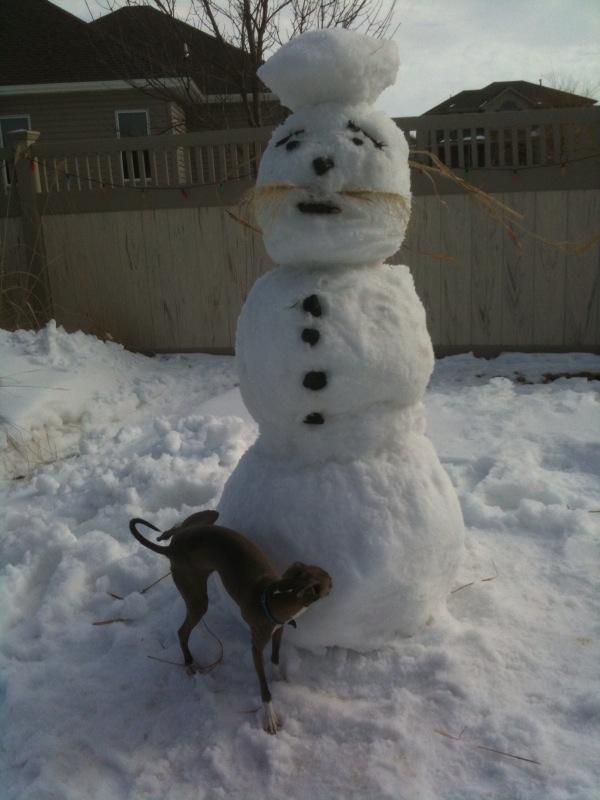 [Snowman-Dog-Pee]