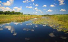 100 Acre Pond