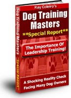 Dog Training Masters