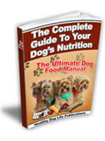 Dog Food Dangers