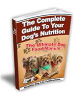 Dog Food Dangers