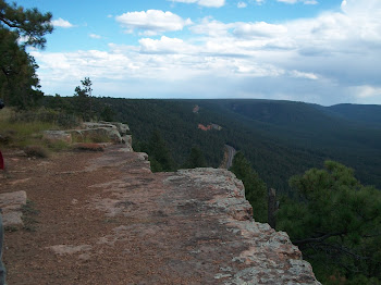 Mogollon Rim, Northen AZ