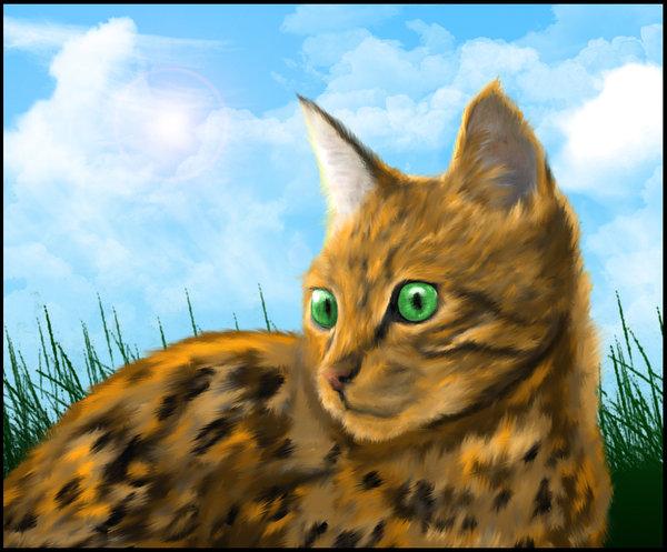 Výsledek obrázku pro warriors cats leopardstar