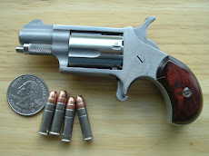North American Arms Mini .22 L.R.