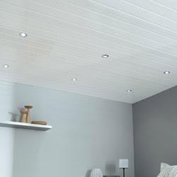 Demonter faux plafond lambris formulaire de demande de for Faux plafond plastique