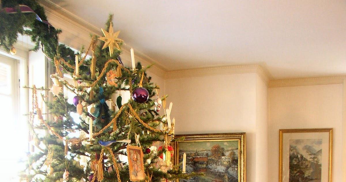 Christmas Tree Farm Pennsylvania